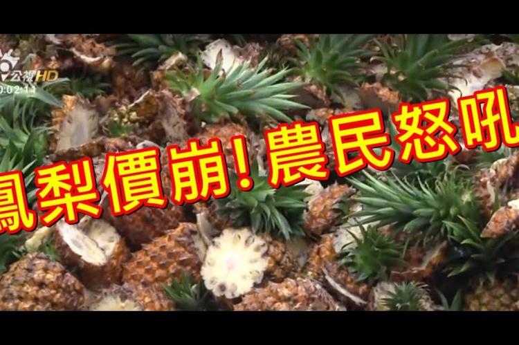 Embedded thumbnail for 鳳梨價崩!農民怒吼! 外銷.加工.促銷 消化三成產量?