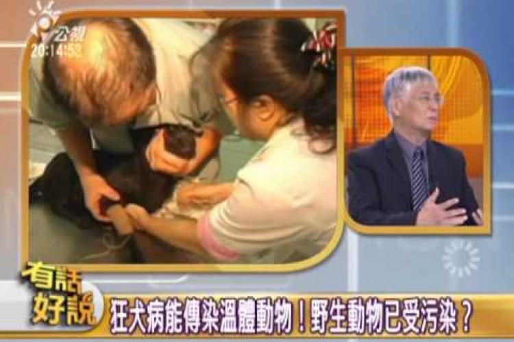 Embedded thumbnail for 三處鼬獾確定病毒 狂犬病再度襲台!